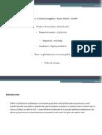 Alvarado Y .V 5. globalizacion y nacion global.pptx