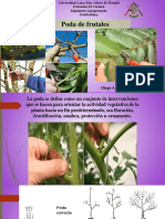 4 Poda frutales-1573532908(1)