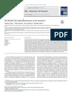 Paradoxical head tilt.pdf