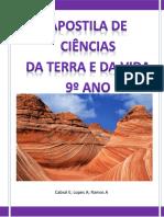 apostila CTV 9º Ano pdf