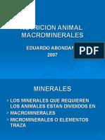 MACROMINERALES