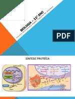 sintese proteica