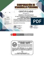 ANGUELO HIOLGUIN SILVA- Seguridad laboral salud ocupacional y medio ambiente  (1).pdf