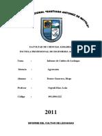 Informe Final de Cultivo de Lechugas.docx