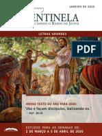 Revista Sentinela.pdf