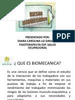 06 07 2017 RIESGOS BIOMECANICOS.pdf