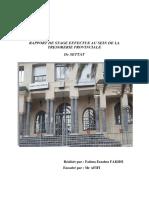 rapport-fin-tresor-2.pdf