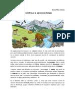 Segunda clase de ecosistemas y agroecosistemas (1).docx