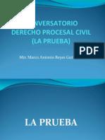 LOS MEDIOS PROBATORIOS en el PROCESOS CIVIL y su TASACIÓN.