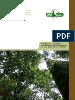 Informe 1. Diagnóstico de la situación actual y las barreras y oportunidades – Versión final