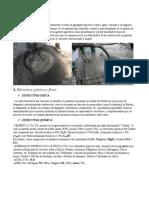 Concreto & Polimeros