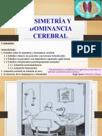 ASIMETRÍA Y DOMINANCIA CEREBRAL