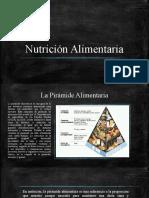 piramides alimentarias.pptx