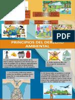 infografia principios ambientales
