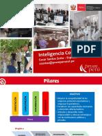 Inteligencia Comercial II