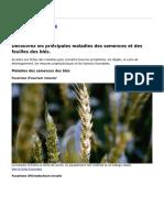 syngenta_france_-_les_maladies_du_ble_-_2019-02-26.pdf