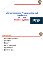 L1 Number Systems