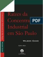 Raizes-da-concentracao-industrial-em-Sao-Paulo.pdf