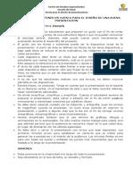 TEORIA PARA HACER PRESENTACIONES.docx