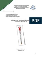 Completação final (1).pdf