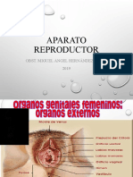 OBSTETRICIAAA.ppt