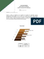 Formato final perfil sensorial