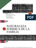 TAREA ACADÉMICA DE FAMILIA DIAPOS