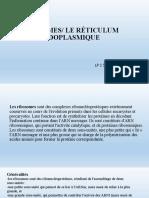 lp 1 sem 2.pptx.pdf