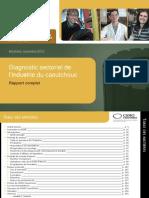Rapport_Diagnostic_CSMO_Caoutchouc.pdf