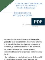 3. Ciclo Celular - Mitosis y Meiosis