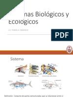 Clase 1 - Introducción a Sistemas.pdf