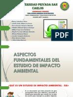 ESTUDIO AMBIENTAL DE UN PROYECTO .pdf