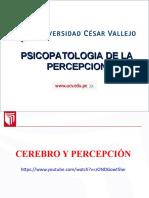 Sesión 05 - Psicopatología de La Percepción