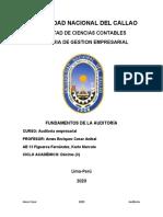 AE 13 FUNDAMENTOS DE LA AUDITORIA FIGUEROA F. KARLO