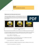 IEDA FQ1 Determinacion Formula