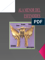 ALA MENOR DEL ESFENOIDES