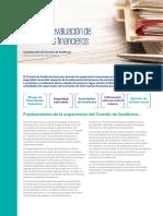 revision-y-evaluacion-de-los-estados-financieros