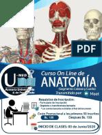ROTE CABEZA Y CUELLO On Line Información