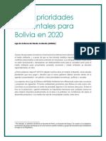 Las-10-prioridades-ambientales-para-Bolivia-en-2020_f