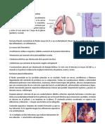 7. Pleura y Mediastino.pdf