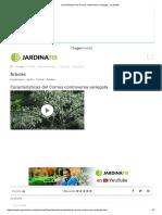 Características del Cornus controversa variegata - Jardinatis