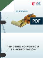 EL ENDOSO.pptx