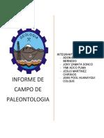 informe de campo paleontología
