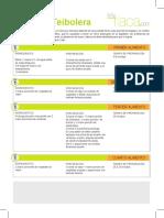 SoyFlaca-teibolera.pdf