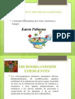presentacion microorganismos emergentes.pptx