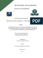 TESIS DOCTORADO AZABACHE CORONADO LUIS ALBERTO