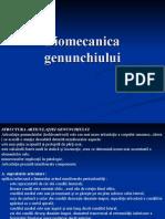 Curs_03_Biomecanica_anII_BFKT
