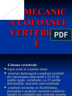Curs_06_Biomecanica_anII_BFKT.ppt