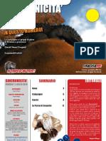 Sincronicità 1 Lug 2010.pdf