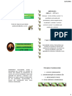 REVISÃO alunos.pdf